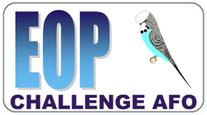 A.F.O. Challenge E.O.P.